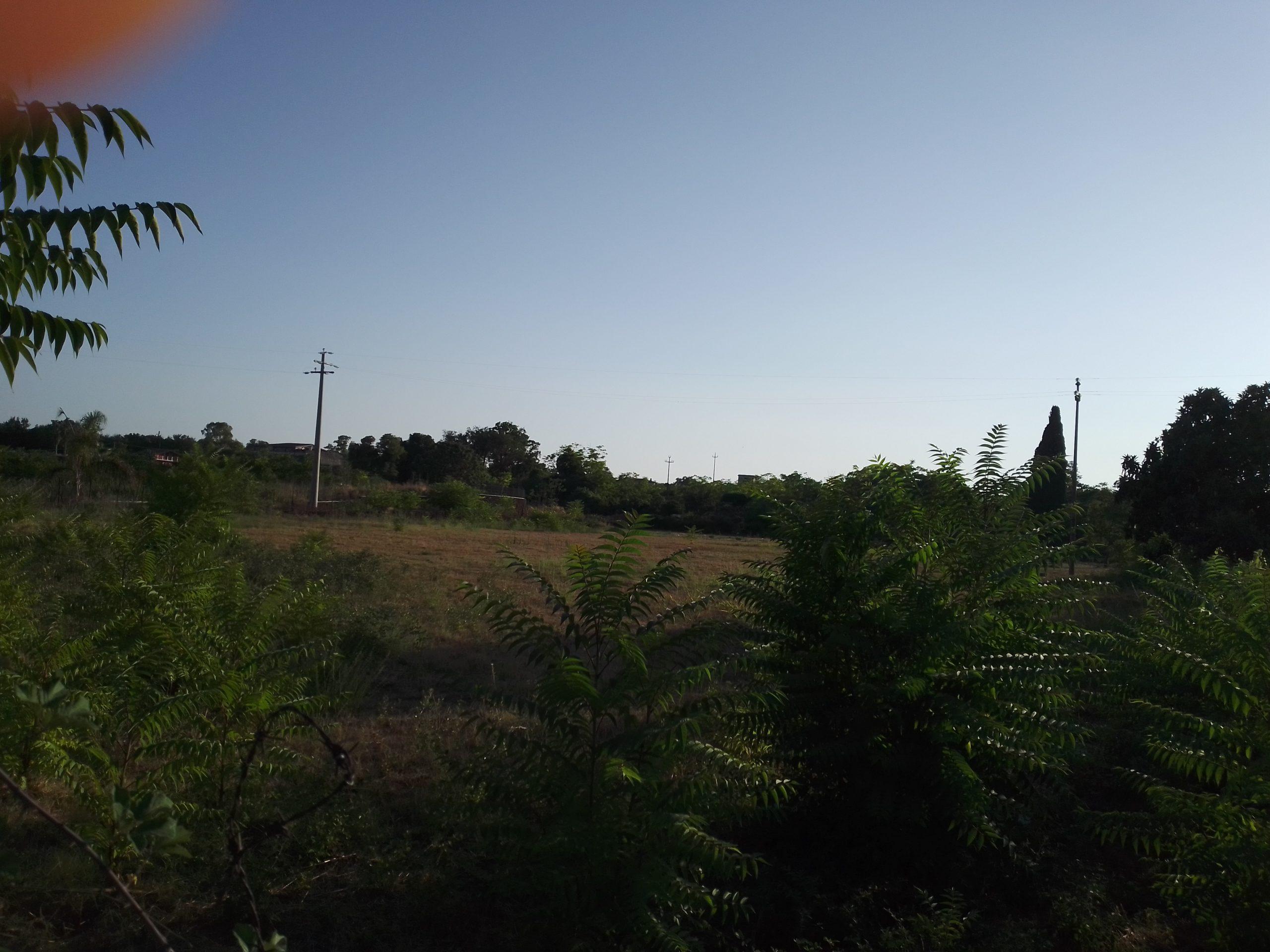 Acireale Frazione Fiandaca terreno agricolo mq 1900